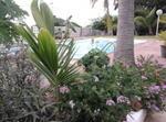 Reunion Island -st Gilles Les Bains