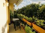 Appartement 50 M2 Terrasse Montpellier