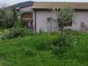 Home With Garden - Isola D'elba- Tuscany - Italy