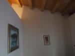 Olivella Suite