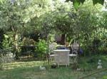 Hinterhaus, Garten
