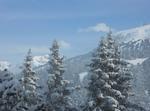 Amateurs De Glisse Ou De Randos Dans Les Alpes