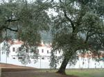New House In Natural Place (mountain Of Huelva)