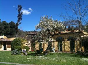 Cecilia Intercambia Casa En Firenze Italia