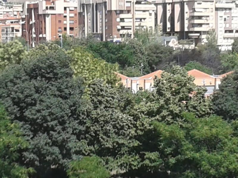 Anita intercambia casa en granada espa a for Ciudad jardin granada