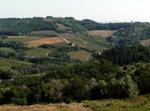 Scambio Bellissima Casa Nel Chianti 25 Km Firenze