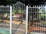Vendo Casa O Cambio En Paraguay Por España