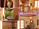 I Gelsomini