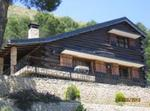 Among Pines Cabin