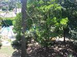 Villa De Standing Sur Jardin De 2000m2. Piscine