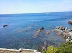 Recco Centro Vicino Portofino E 5 Terre
