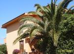 Appartamento In Villetta 150 Mt Dal Mare