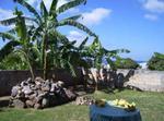 Studio Aux Antilles Contre Appartement Ou Maison