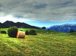 Villetta In Montagna,trentino,valle Di Non,predaia