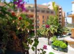 Deliziosa Casa Nel Centro Di Palermo