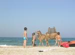 Primera Línea De Playa En Del Norte De Marruecos