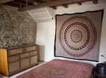 Casa Bio - Organic House