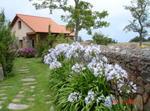 Playa Casa Y Jardín Privado Asturias Cudillero