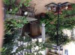 Wohnung Im Grünen Hinterhof