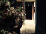 Lindo Piso En Coyoacán