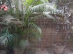Maravilloso Ground Floor En New Delhi