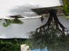 Agréable Maison Aux Portes De La Camargue
