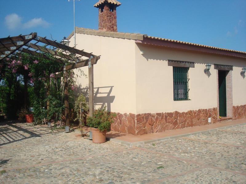 Pepibravo intercambia casa en sevilla espa a - Casas con piscina en sevilla ...