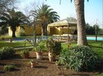 Casa Rural Amplia Y Cerca De Sevilla Y Carmona