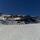 S.nevada